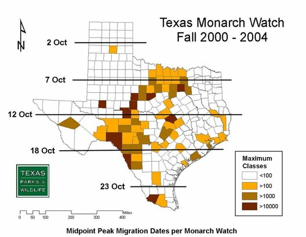 Mapp of Fall Monarch Migration Through Texas